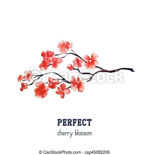 realistic red sakura blossom japanese red cherry tree isolated on rh canstockphoto com Japanese Cherry Blossom Illustration Cherry Blossom Tattoo Drawings