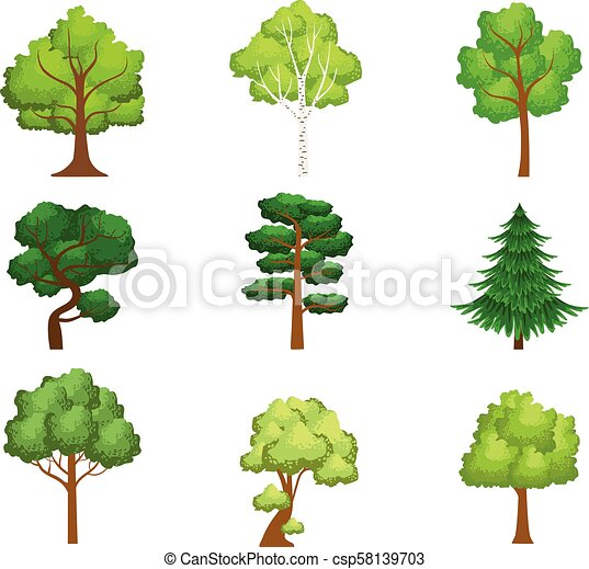 Realistic Trees Set Of Realistic Design Vector Stickers Isolated On