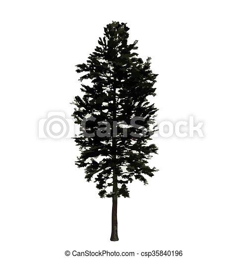 realistic vector tree isolated - csp35840196