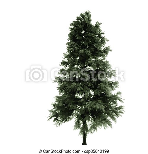 realistic vector tree isolated - csp35840199