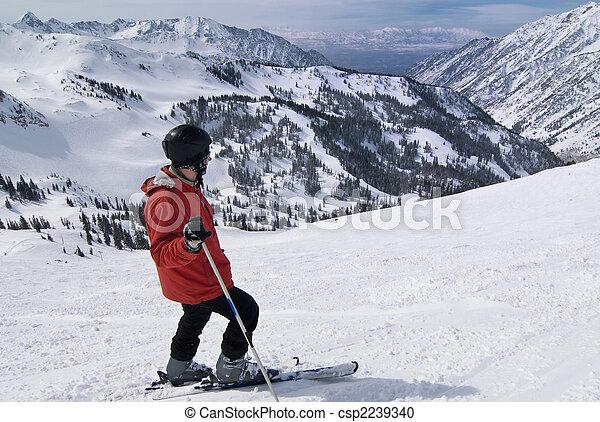 Skier en un increíble lugar de esquí - csp2239340