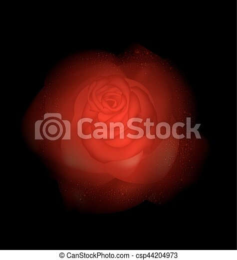 red abstract rose - csp44204973
