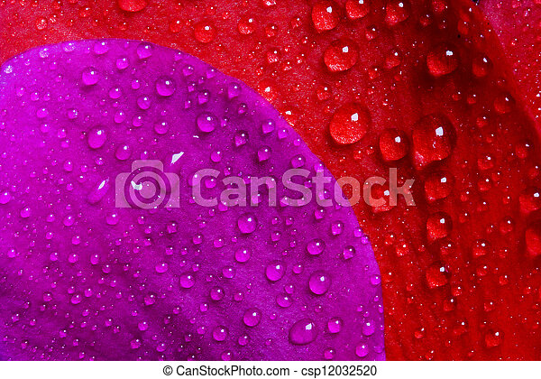red and violet texture - csp12032520