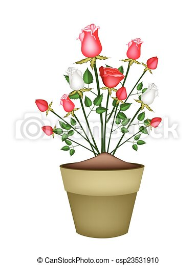 Vector clip art of red and white roses in ceramic flower pot a red and white roses in ceramic flower pot csp23531910 ccuart Image collections