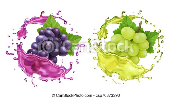 Red and white wine grapes and juice splash. Realistic vector icon set - csp70873390