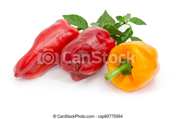 Red and yellow bell peppers and twig with leaves - csp60775064
