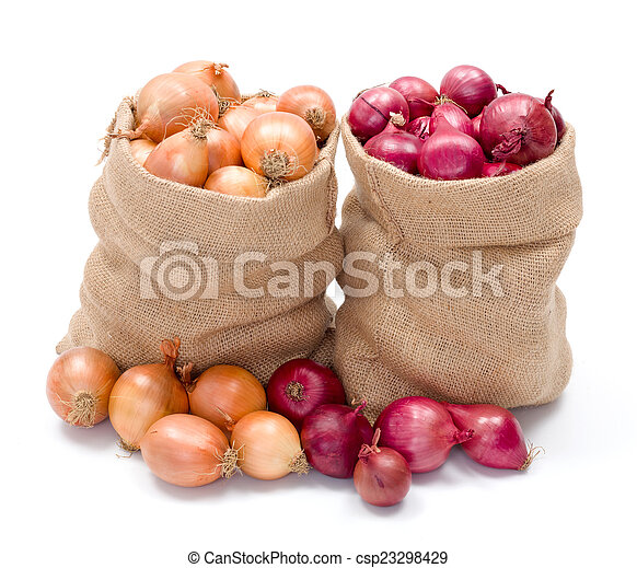 Red and yellow onions in burlap sack - csp23298429