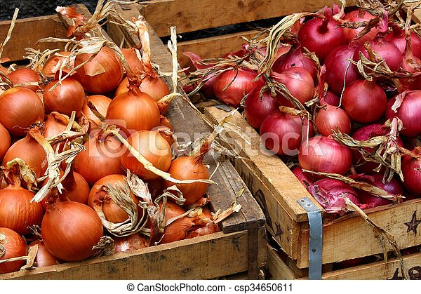 red and yellow onions - csp34650611