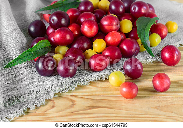 Red and yellow ripe plums on the table. - csp61544793