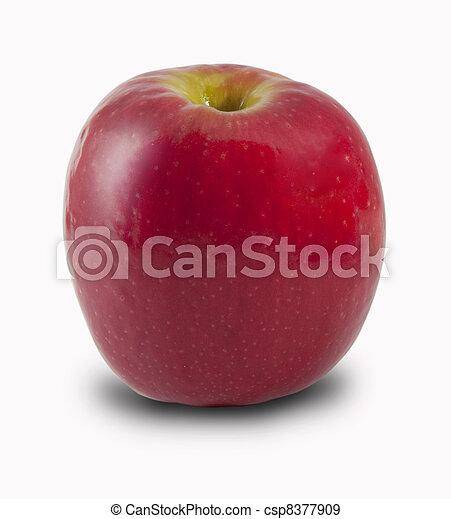 Red apple - csp8377909