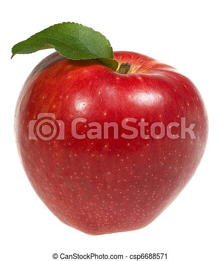 red apple wtih leaf - csp6688571