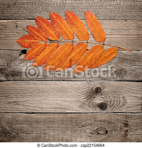 Red autumn leaves on wooden background - csp22154664