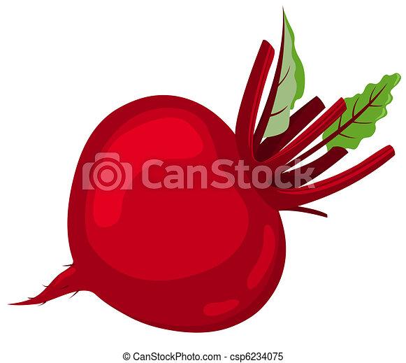 Red beet. - csp6234075