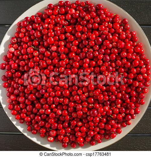 Red berries on a white plate - csp17763481