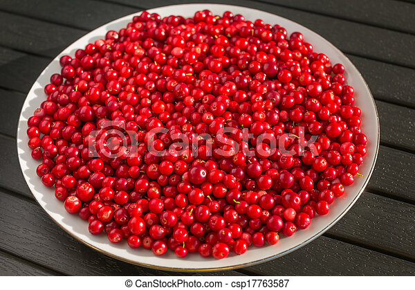 Red berries on a white plate - csp17763587