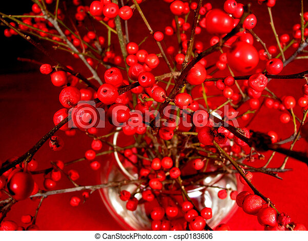 Red Berry Tree Branches In A Vase Red Berry Tree Branches In A