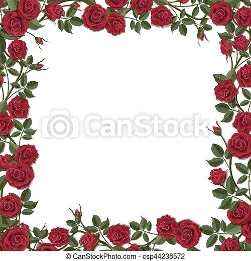 Red blossom rose flowers frame. Square frame of red blossom rose ...