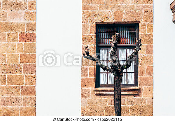 Red brick wall with window - csp62622115