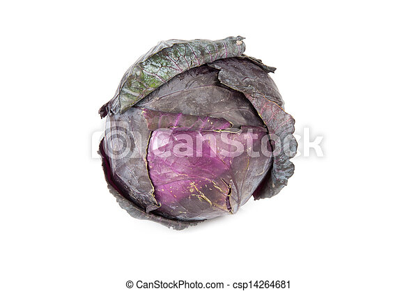 red cabbage on a white background - csp14264681