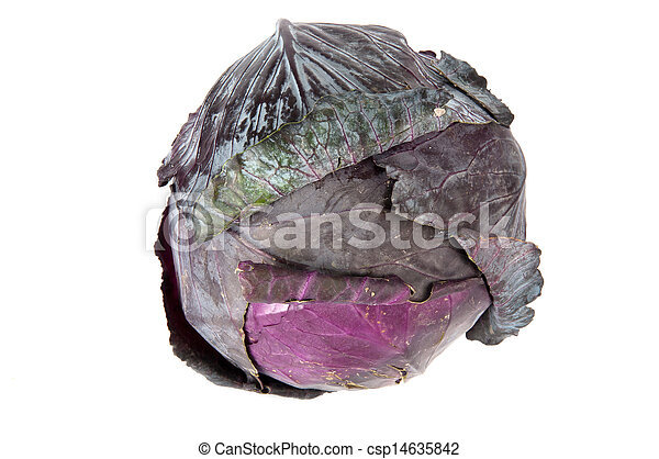red cabbage on a white background - csp14635842