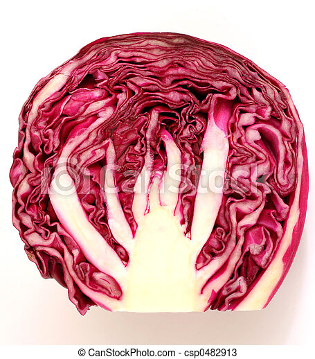 Red cabbage slice - csp0482913