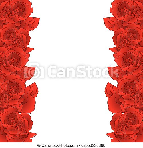 6a1588b1efea4 Red carnation flower border, dianthus caryophyllus - clove pink. national  flower of spain, monaco, and slovenia. vector illustration. isolated on  white ...