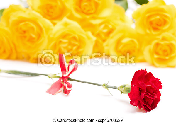 Red carnation flower with bow in front of yellow roses red carnation flower csp46708529 mightylinksfo