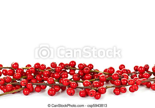 Red Christmas berries border - csp5943813