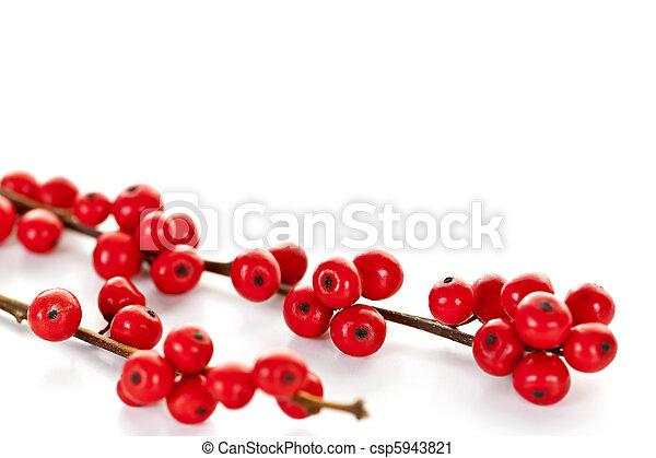 Red Christmas berries - csp5943821