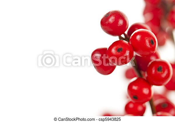 Red Christmas berries - csp5943825