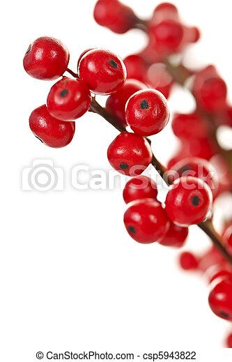 Red Christmas berries - csp5943822