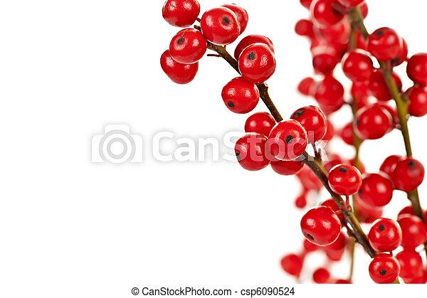 Red Christmas berries - csp6090524