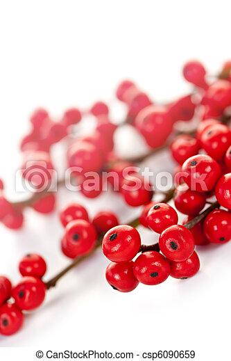 Red Christmas berries - csp6090659