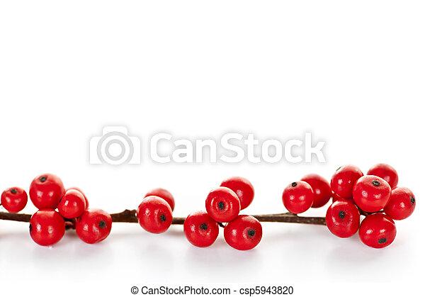 Red Christmas berries - csp5943820