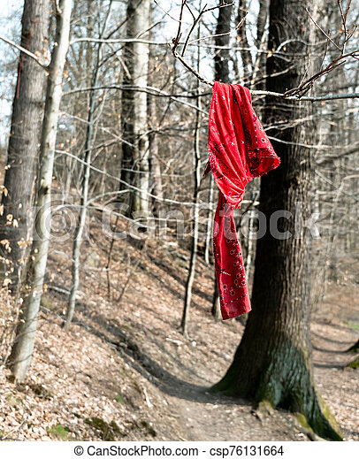 red cloth on a tree - csp76131664