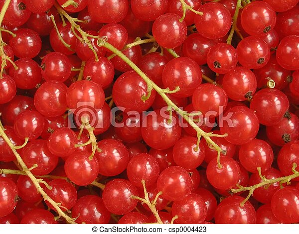 Red Currants - csp0004423