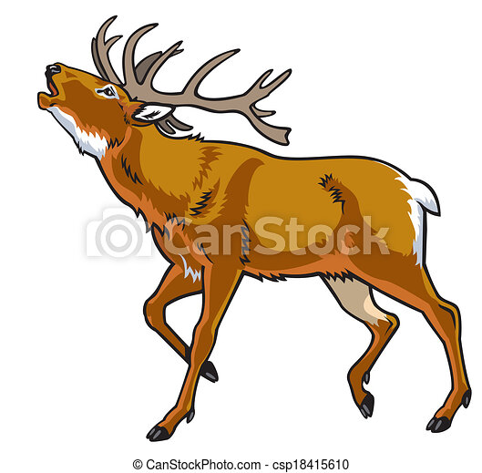 Red Deer Stag Side View Image Isolated On White Background Vector