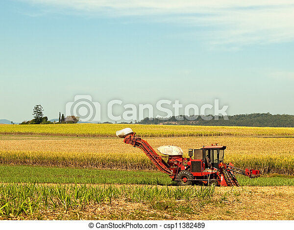 Red Farm machine cane harvester on Australian agriculture land - csp11382489