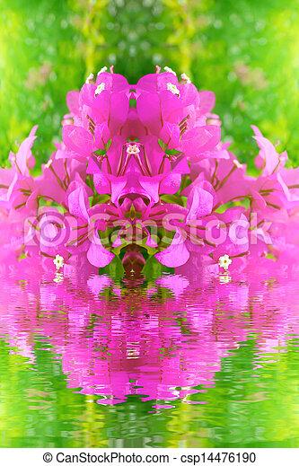 red flower blooming - csp14476190