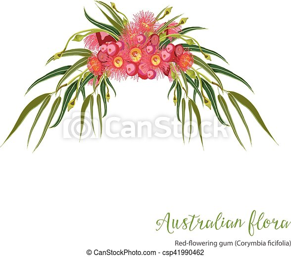 red flowering gumtree design red flowering gum tree bouquet of flowers clip art transparent bouquet of flowers clip art black and white