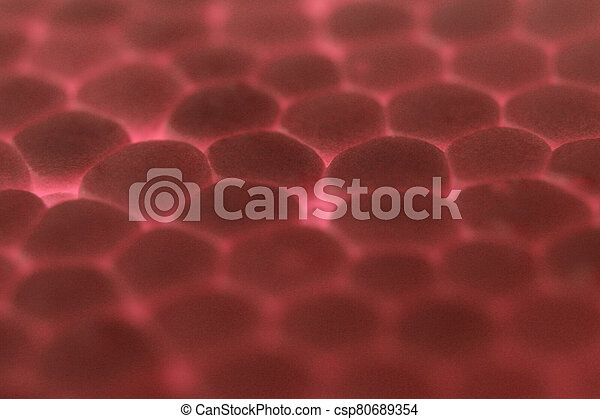 Red Foam Plastic Texture. Abstract Styrofoam Background. Macro Closeup. - csp80689354
