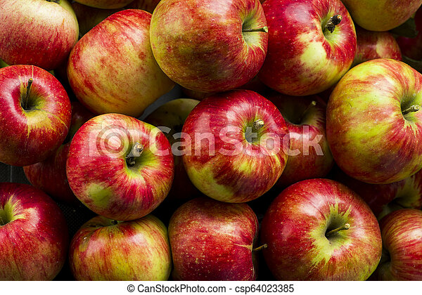 red fresh apples on a wooden table - csp64023385