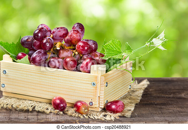 Red grapes in wooden box - csp20488921