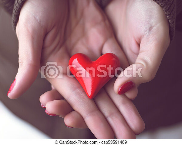 Red Heart In Woman Hands Symbol Of Love Symbolic Red Heart In