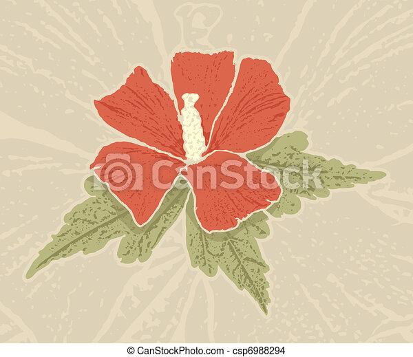 Red hibiscus - csp6988294
