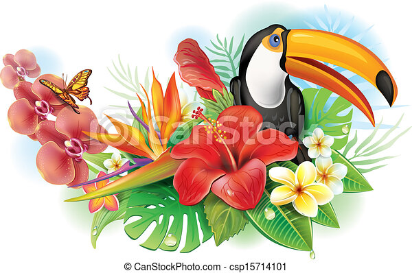 Red hibiscus, toucan and tropical flowers - csp15714101