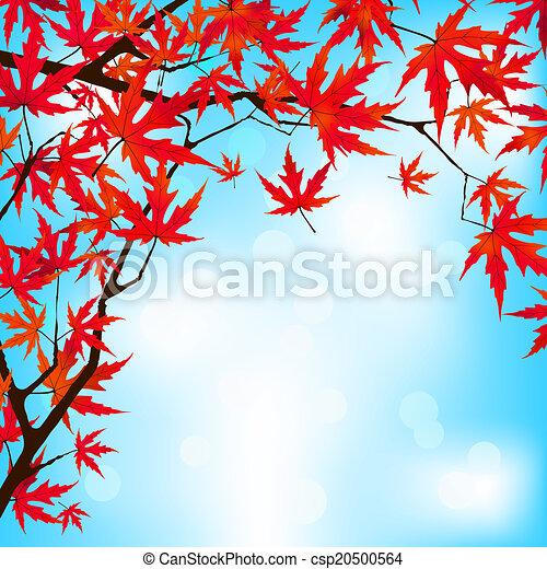 Red Japanese Maple leaves against blue sky. EPS 8 - csp20500564