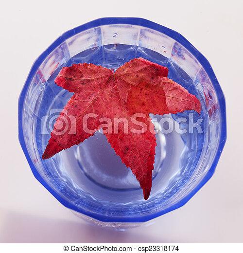 Red leaf - csp23318174