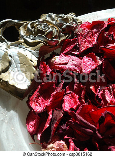 Red leaves - csp0015162