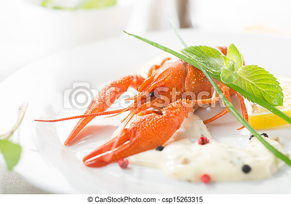 Red lobster on a white plate - csp15263315